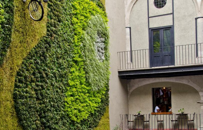 The manifold functions of vertical gardens.